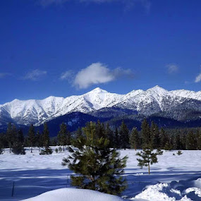 Elkhorn mountains by D.j. Nichols - Instagram & Mobile Android ( elkhorn mountains )