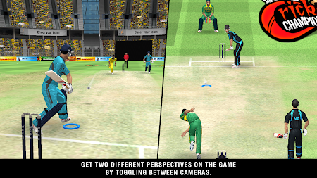 World Cricket Championship 2 1.2 screenshot 175640