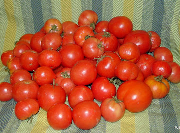 Saving Green Tomatoes For The Holidays Recipe