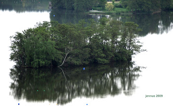 Photo: Insel im See