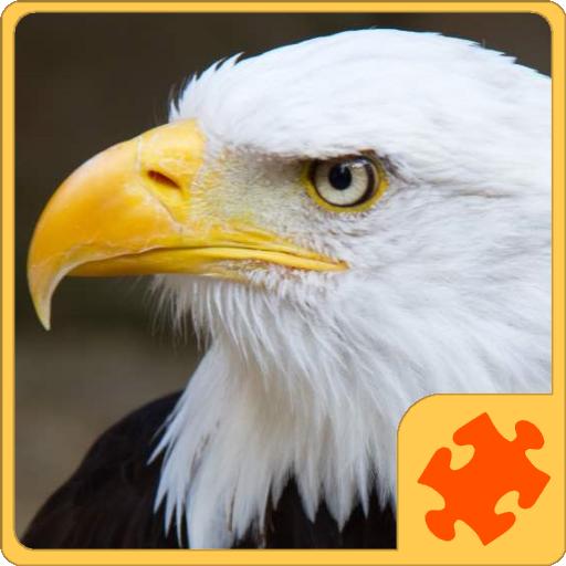 Birds Puzzle