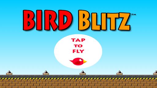 Bird Blitz