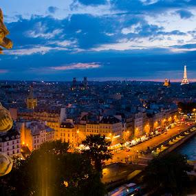 Twilight Paris  by Victor Mukherjee - City,  Street & Park  Skylines ( paris, eiffel tower, europe, gargoyle, italy, city, night, , Urban, City, Lifestyle )