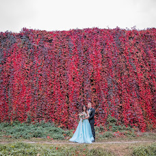 Wedding photographer Dmitriy Shirokopoyas (15081990). Photo of 28.11.2018