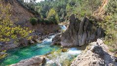 Granada, Jaén, Málaga y Almería son los escenarios para  la protección de la biodiversidad y la innovación ambiental.