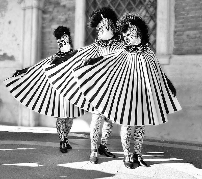 Tre moschettieri zebrati di Rossella13