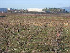 Photo: Una altra vista del polígon industrial 'La Cava' i del que queda del Tossal del Calvari, vistos des del Pla de Colata.