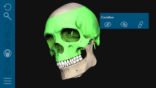 Face3D app for Android screenshot