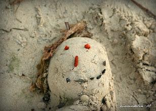 Photo: Sand Man