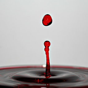 Red Drop by Jacques De Villiers - Artistic Objects Other Objects (  )