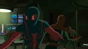 Spider Slayers: Part 1 thumbnail