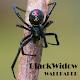 Black Widow Animal Wallpaper Download on Windows