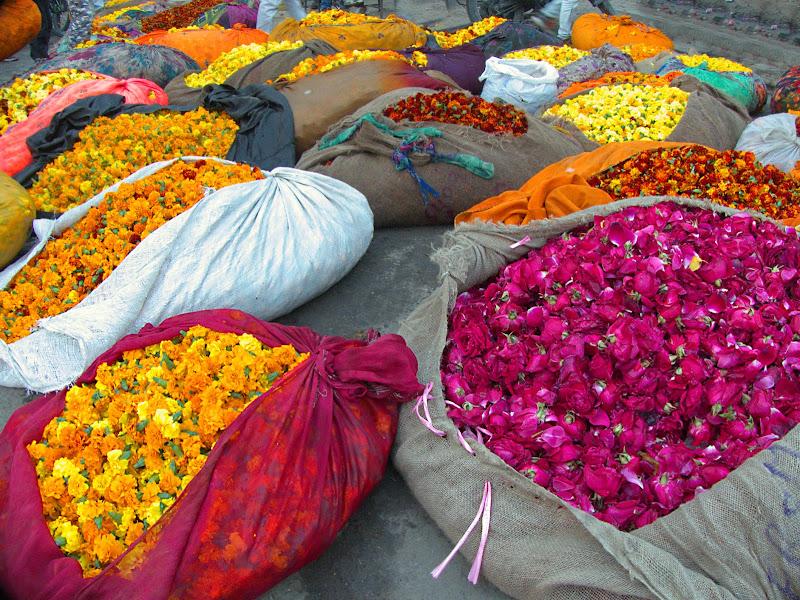 India Mercato dei fiori di silviola