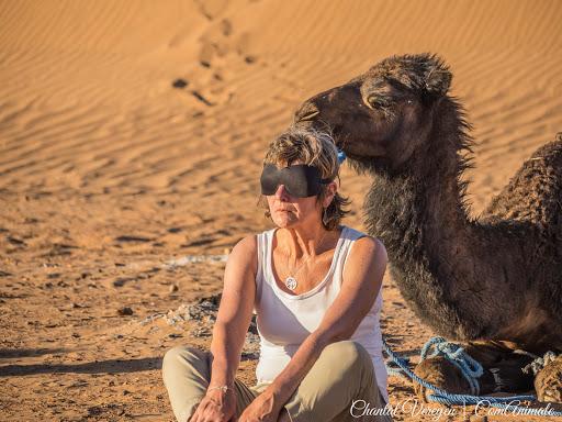 Stage initiatique dans le désert