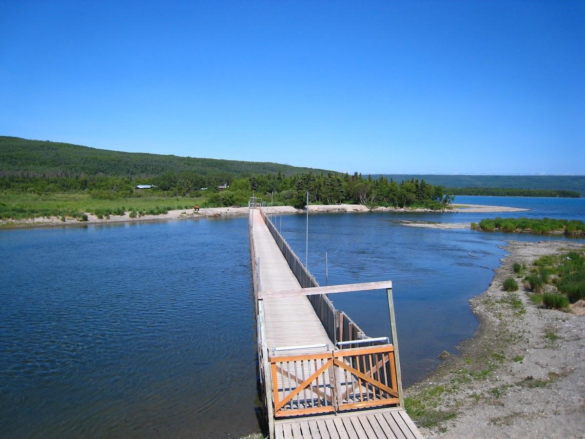 Bridge close by grizzly presence