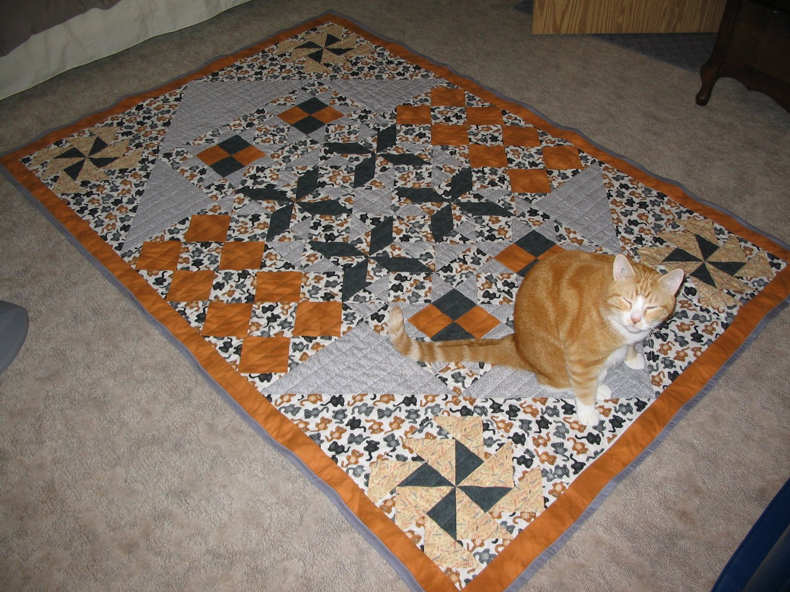 Photo: Strider modeling the quilt.