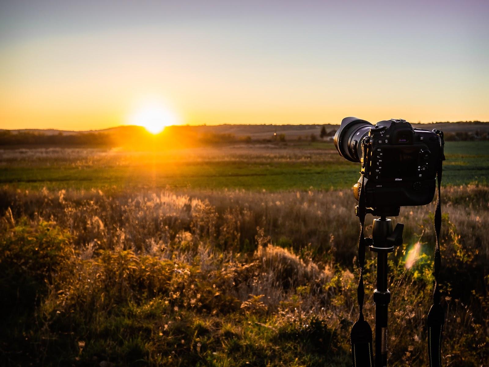 lens hood on a camera shooting into the sun