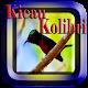 Download Kicau Kolibri Ninja For PC Windows and Mac