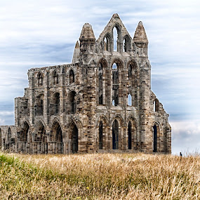 Whitby Abbey  by Kellee Wright - Buildings & Architecture Public & Historical ( building, grass, architecture, landscape, abbey,  )