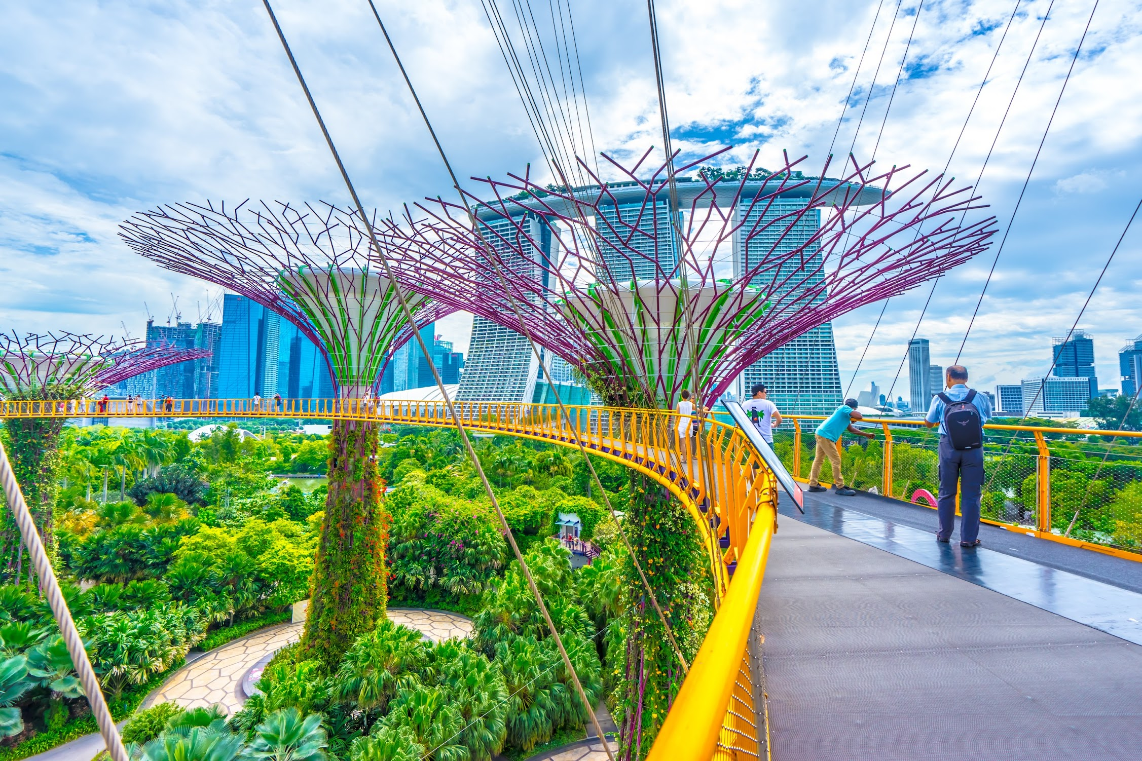 Gardens by the Bay OCBC Skyway2