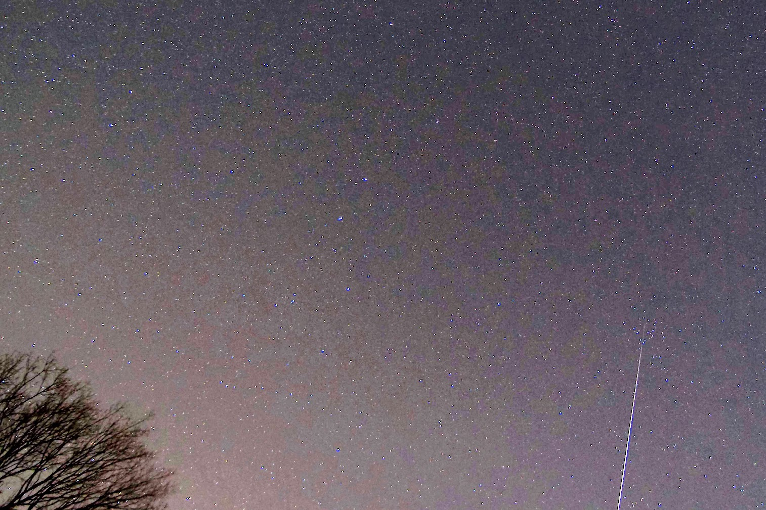 A Bright Geminid Meteor - Cropped Version