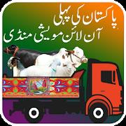 Online Maweshi Mandi- Aqiqah Animal