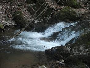 Photo: Voda samo lipti
