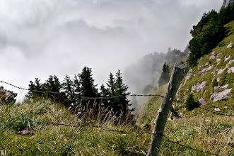 Photo: Auf der Ebenalp, der Nebel zieht auf Bilder vom Alpstein Fotowalk Äscher  #alpsteinfotowalk  #mountainphotos   #mountains   #landscapephotography  by +Margaret Tompkins +Carra Riley +paul t beard +Ke Zeng +David Heath Williams +Landscape Photography  #grasspoker  by +Martin OBER +Jules Falk Hunter +Steven Sherwin +David Murphy  #plusphotoextract  by +Jarek Klimek  #europeanphotography  by +Charles Lupica +Manuel Votta +Susanne Ramharter +pio dal cin +European Photo  #switzerland   #spcfeature  +Swiss Photography Club G+  #treetuesday  by +Tree Tuesday +Christina Lawrie +Shannon S. Myers  #appenzell