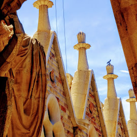 Meditation on the roof by Nelida Dot - Buildings & Architecture Architectural Detail ( roof, statue, gaudi, church, meditation, barcelona )