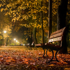 walk in the park by Cornelius D - City,  Street & Park  City Parks