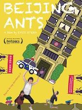 Beijing Ants