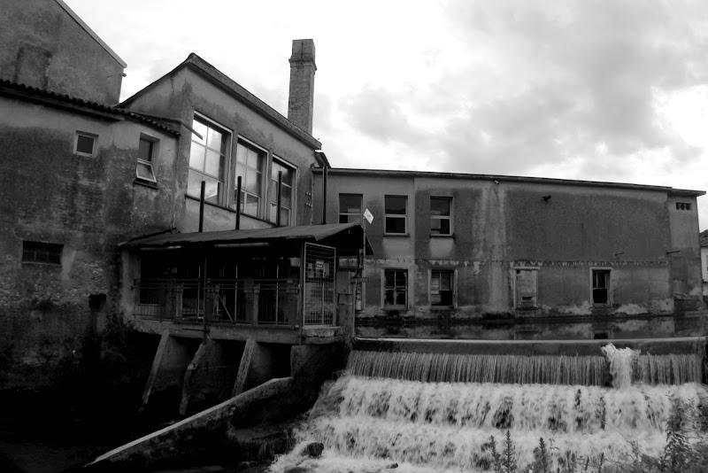 By the river di Alice Protto Ph