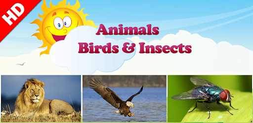Animals Learning - Apps on Google Play