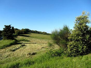 terrain à Alairac (11)