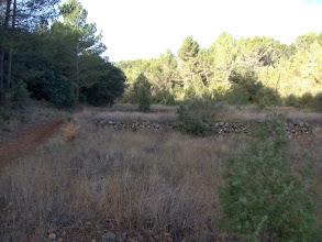 Photo: Amplio sendero de subida con campos abandonados