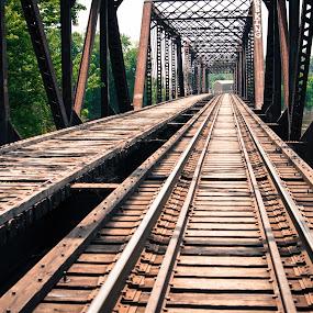 Bridge over the Grand River by Sherry Hengeveld - Buildings & Architecture Bridges & Suspended Structures ( grand rapids michigan, railroad tracks, grand river, bridges )