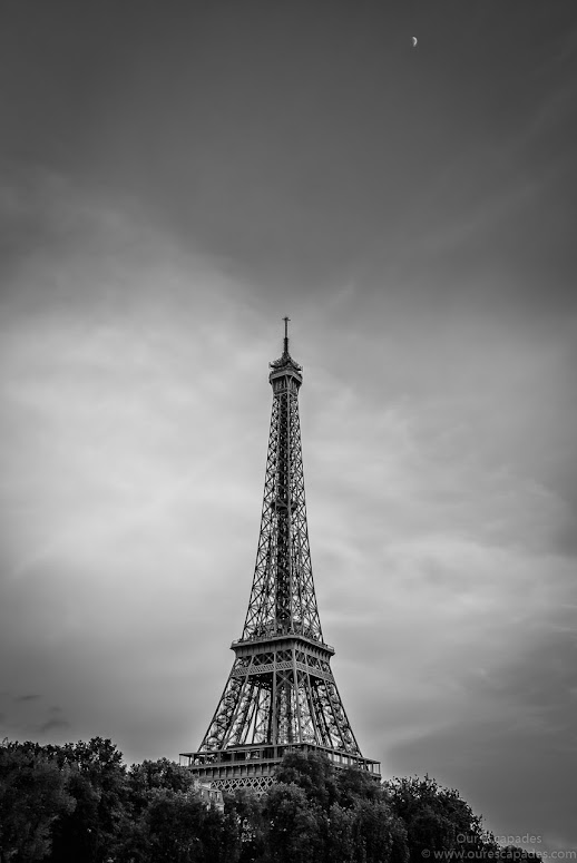 Eiffel Tower, from the Seine River