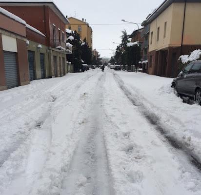 Bianca neve di saracal1