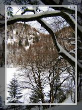 Photo: Lac des Perches