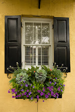 Photo: Rainbow Row Window Box