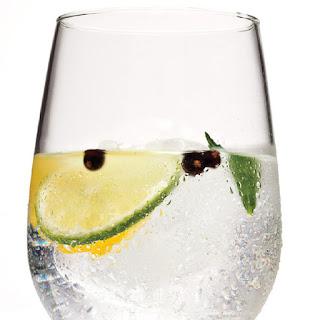 José's Gin & Tonic
