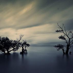 by Rikkiboi Arim - Landscapes Waterscapes
