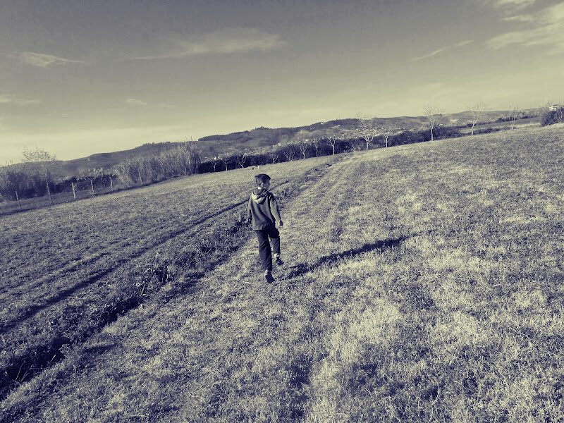 bambino che corre in un campo di ngjelio