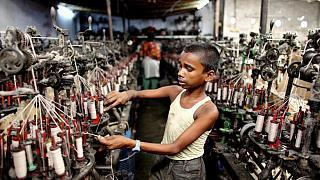 Hollanda tedarik zincirinde çocuk işçiliği olan ürünleri ülkeye sokmayacak  | Euronews