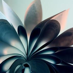 book 6 by Tatiana Syunyaeva - Artistic Objects Other Objects