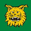 Ilves icon