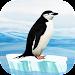 Knowee : Penguins icon