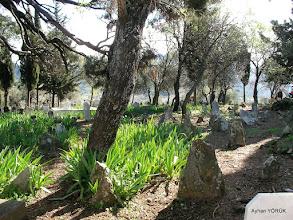 Photo: Gödence Köy Mezarlığı.  Kore Gazisi bir amcanın cenaze töreni var. Kendisine Allah'tan rahmet diliyorum. Kavakdere-Beyler-Gödence Arası EFES-MİMAS (İYON) YOLU 7. Etabı - 06.03.2016