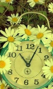 flower clock live wallpaper screenshot 0
