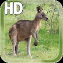 Kangaroo Australia LWP icon